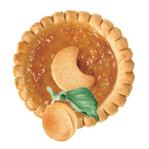 MINI CROSTATINA ALBICOCCA 48G